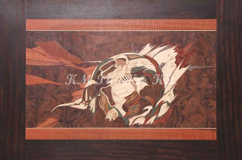 marquetry picture -Comet