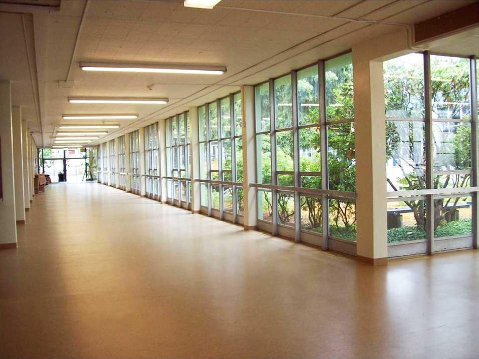 linóleum padló 11, iskola