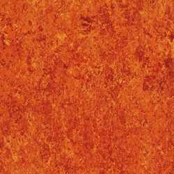 linóleum padló minta 15